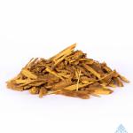 Banisteriopsis caapi yellow | Cielo | Ayahuasca | Quechua | Yage