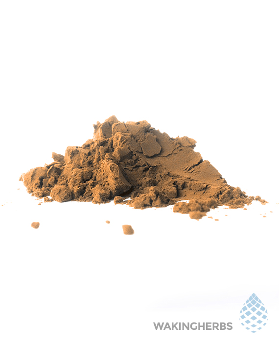 blue lotus 100x powder extract 570 x 708 3
