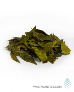 Brunfelsia grandiflora |Manacá | Chiriq sanango | Leaf or Root Bark | Borachero