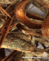 Calliandra angustifolia (Bobinsana bark)