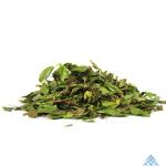 Calliandra angustifolia (Bobinsana leaf)