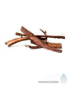 Mimosa Hostilis (Jurema Root Bark)