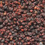 Schisandra Berries Close Up