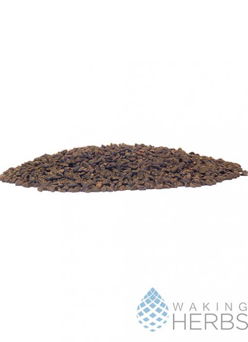 Ipomoea tricolor Seed (Heavenly Blue Morning Glory, Tlitlilzin, Ipomea tricolor)
