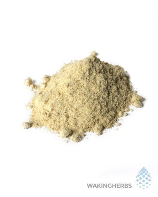Sceletium tortuosum (20X African Kanna Extract Powder)