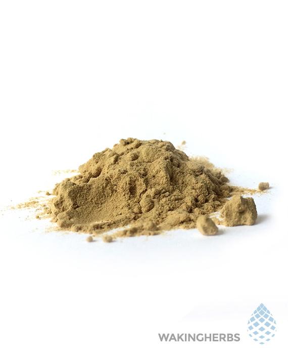 Sceletium tortuosum (100X Thai Kanna Extract Powder)