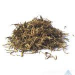 Zornia_latifolia_Leaf_2 570 x 708