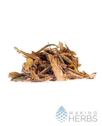 Mimosa hostilis Root Bark| Jurema | Tepezcohuite | Mexico