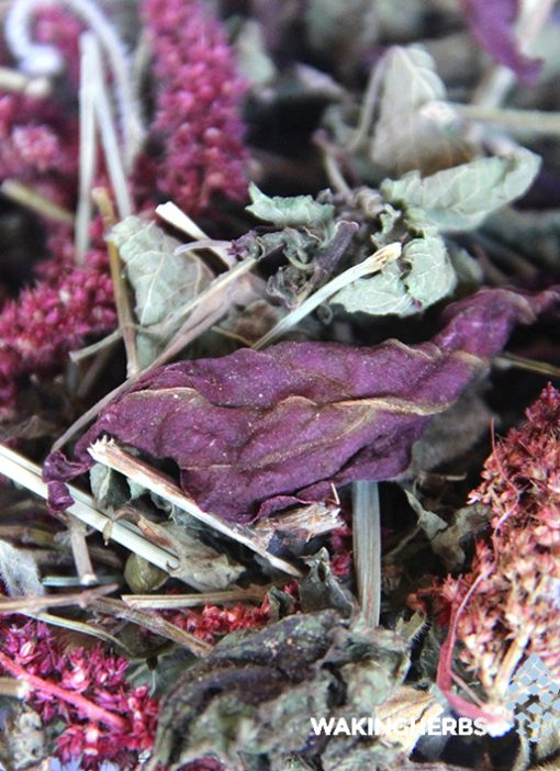Horchata 18 herbs 03