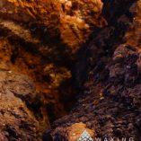 Inonotus obliquus Chaga