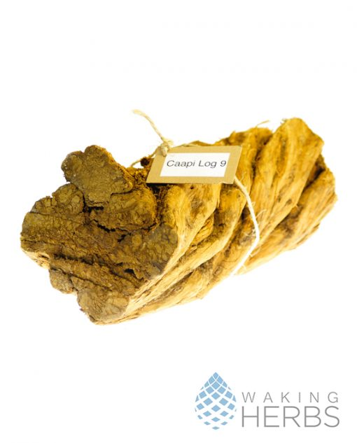 Banisteriopsis caapi | Ceremonial Ayahuasca Piece | Altar Piece | #9 caapi Ceremonial Log