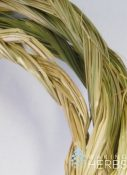 Hierochloe odorata Sweetgrass braid