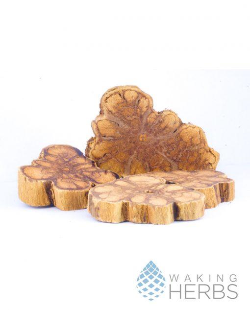 Ayahuasca Amulets