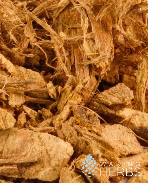 Mulungu Bark (Erythrina mulungu) | Coral tree | Flor de Coral