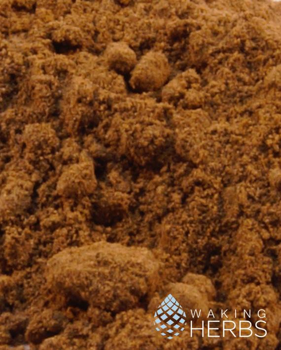 Katukina Sharamasha Rapé | Mulateiro Ash(Calycophyllum spruceanum) & Parica(Schizolobium amazonicum) | #70