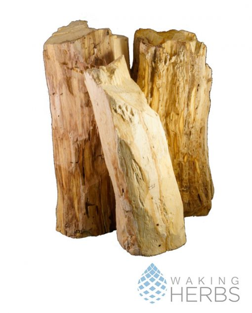 Palo Santo Logs