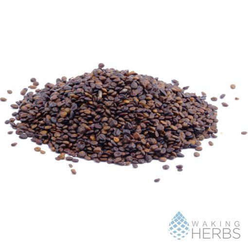 Mimosa hostilis seeds | MHRB