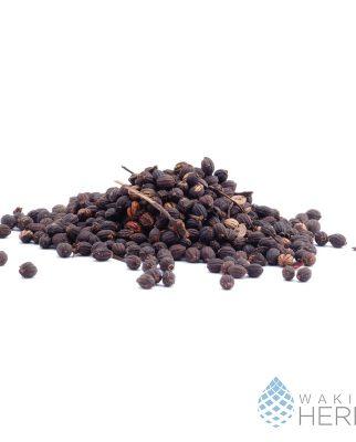 Psychotria viridis seeds | viable