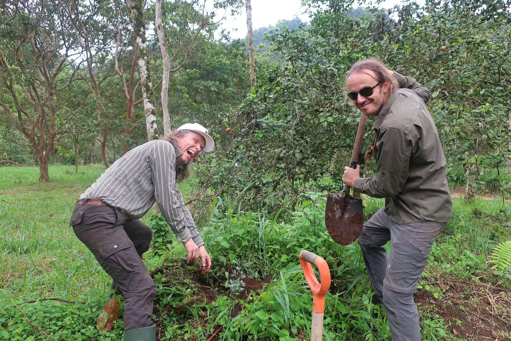 Replanting biodiversity ayahuasca