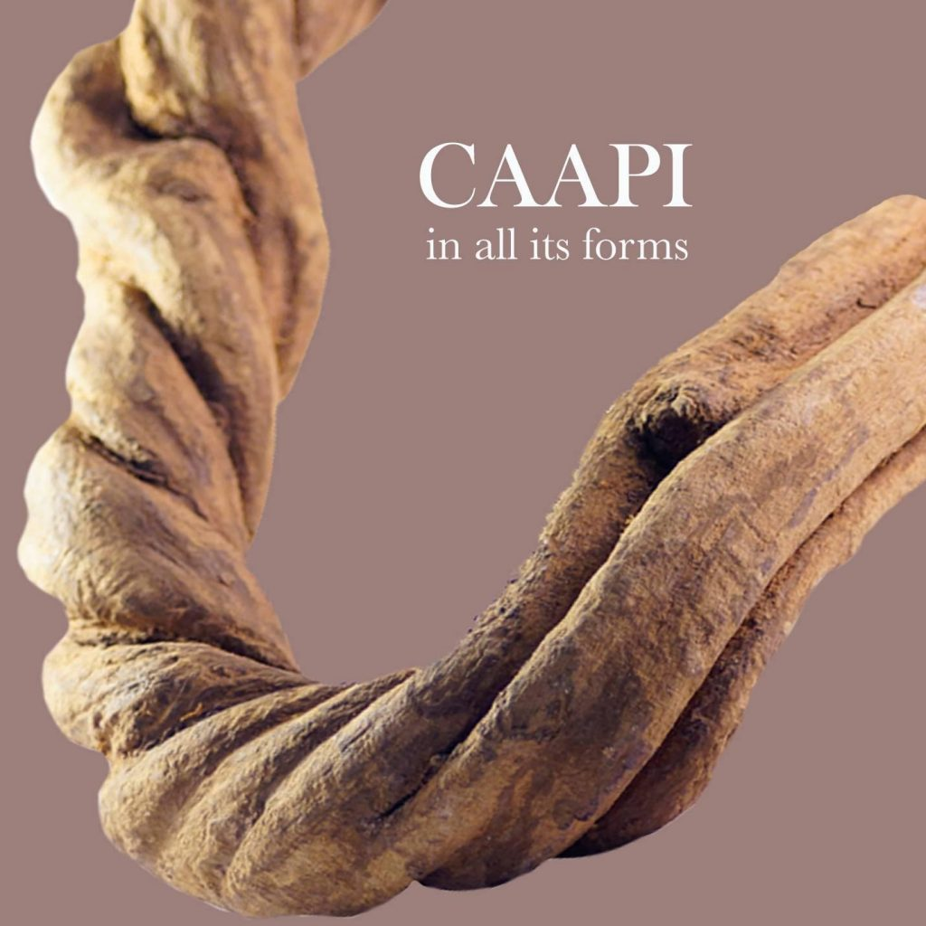 Caapi in all it is forms.